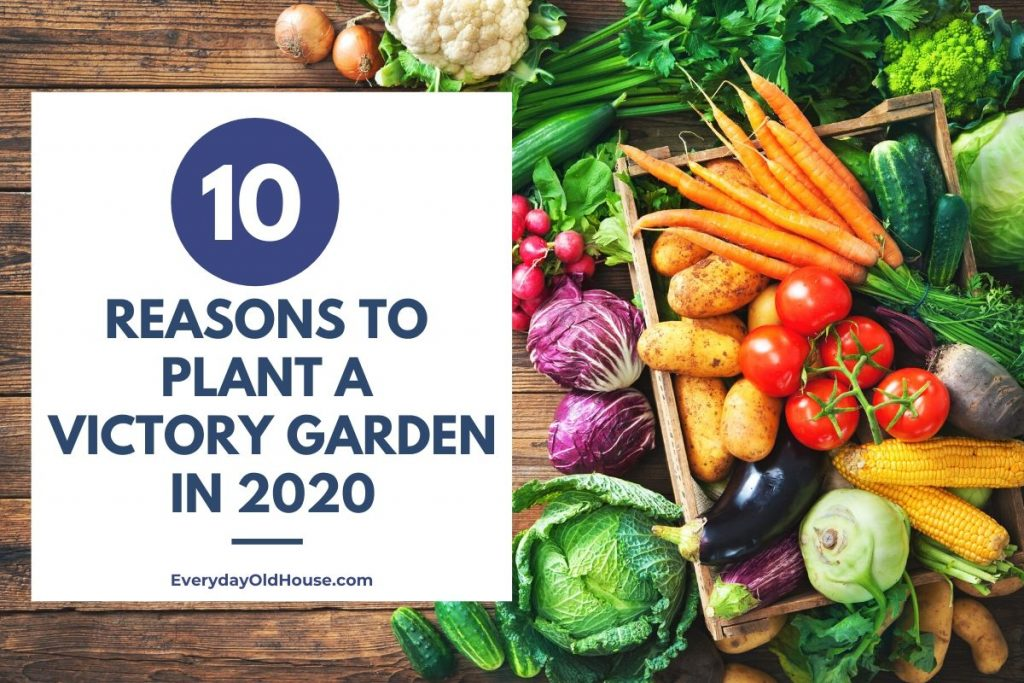 Image of: 10 Reasons To Plant A Victory Garden In 2020 Everyday Old House