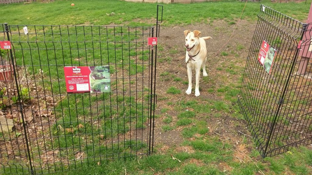How To Install A No Dig Fence Lowes Grand Empire Xl